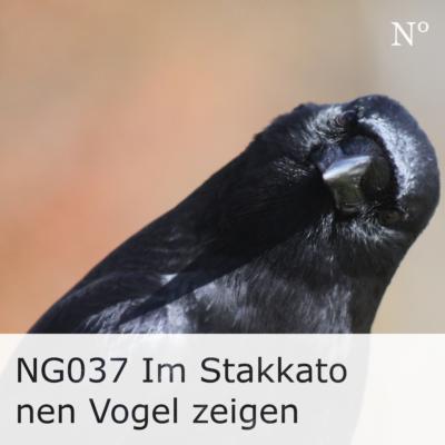 NG037 Im Stakkato nen Vogel zeigen