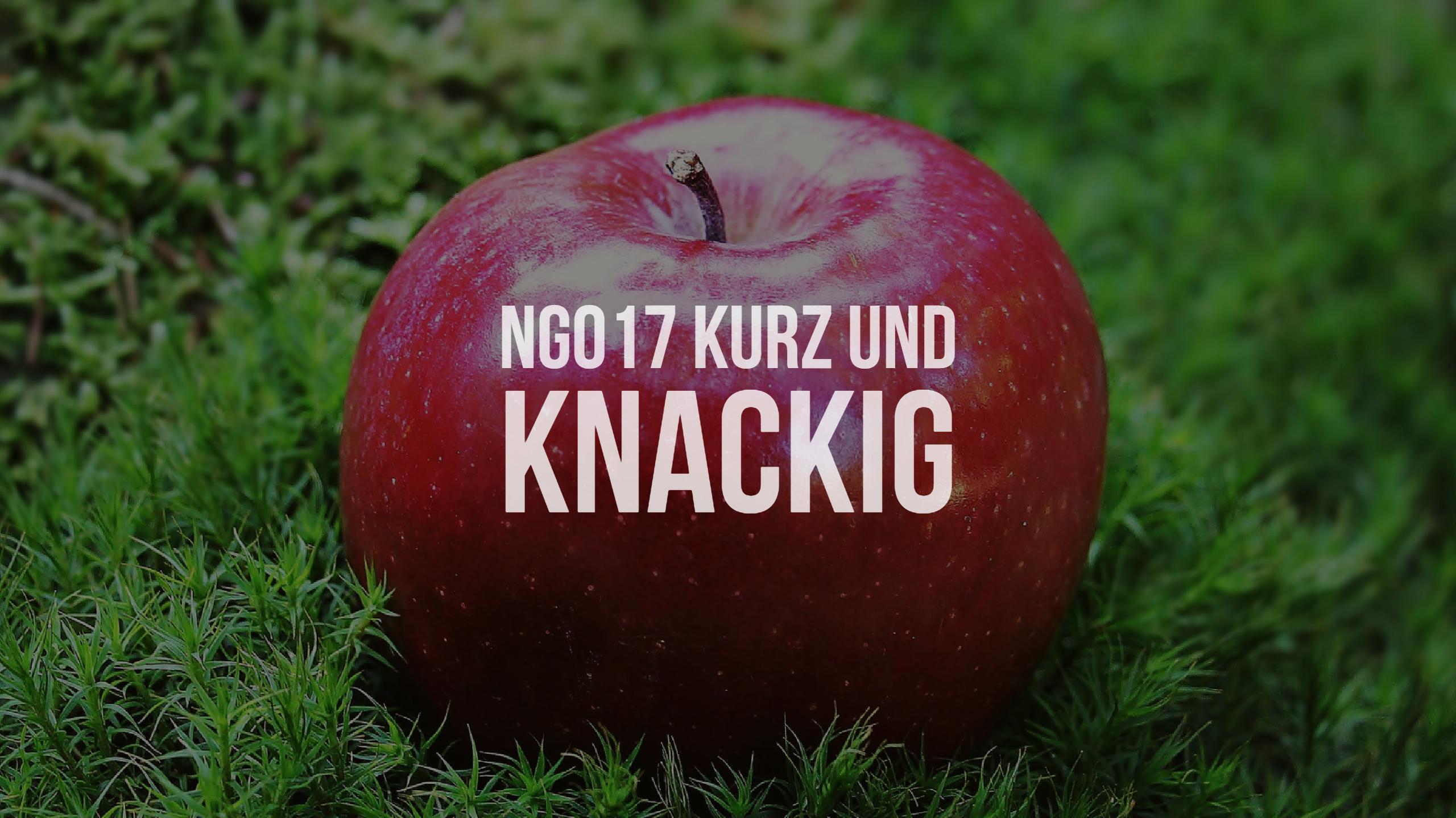 NG017 kurz und knackig