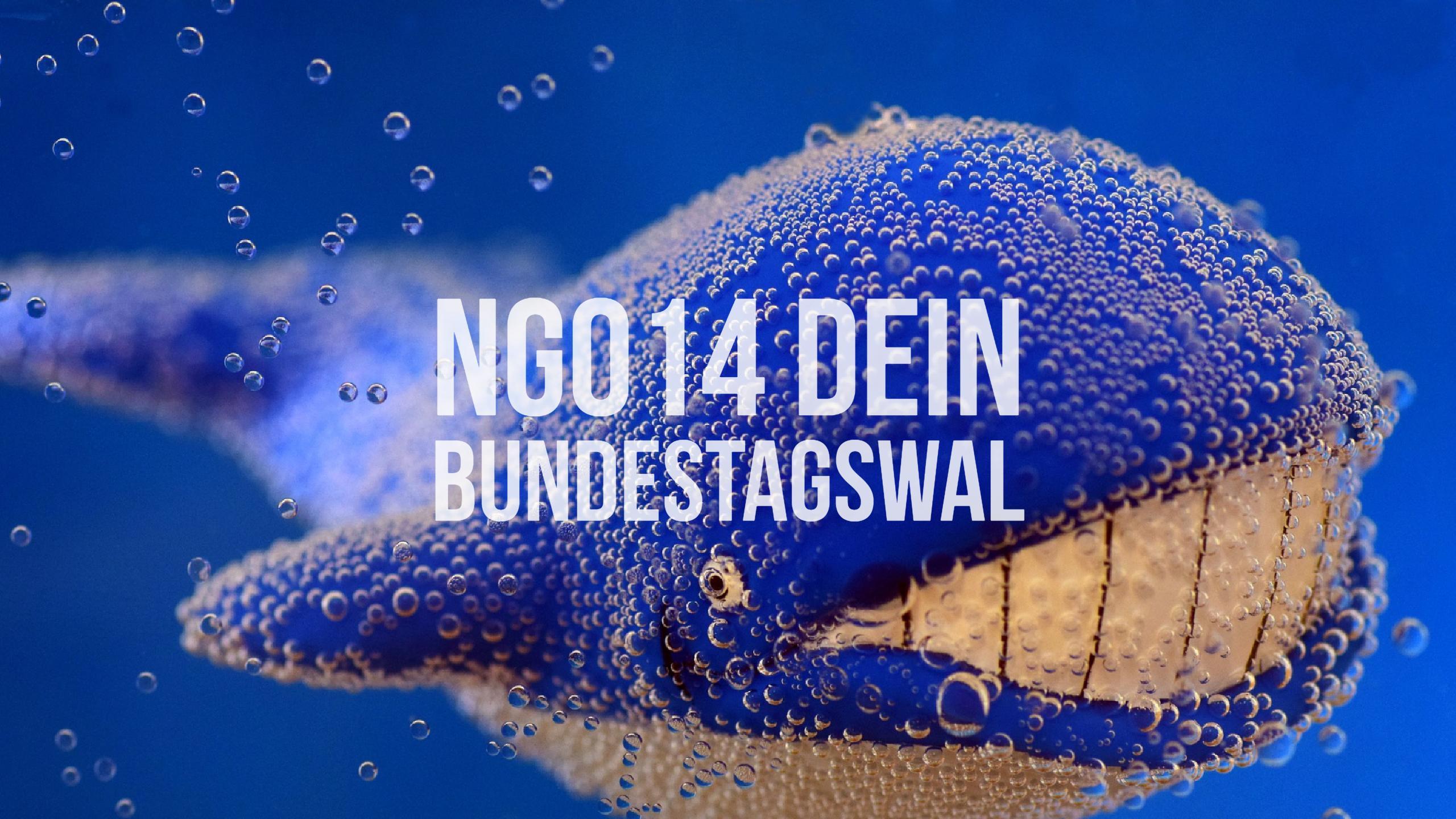 NG014 Dein Bundestagswal