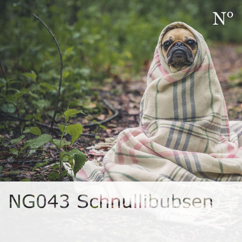 NG043 Schnullibubsen