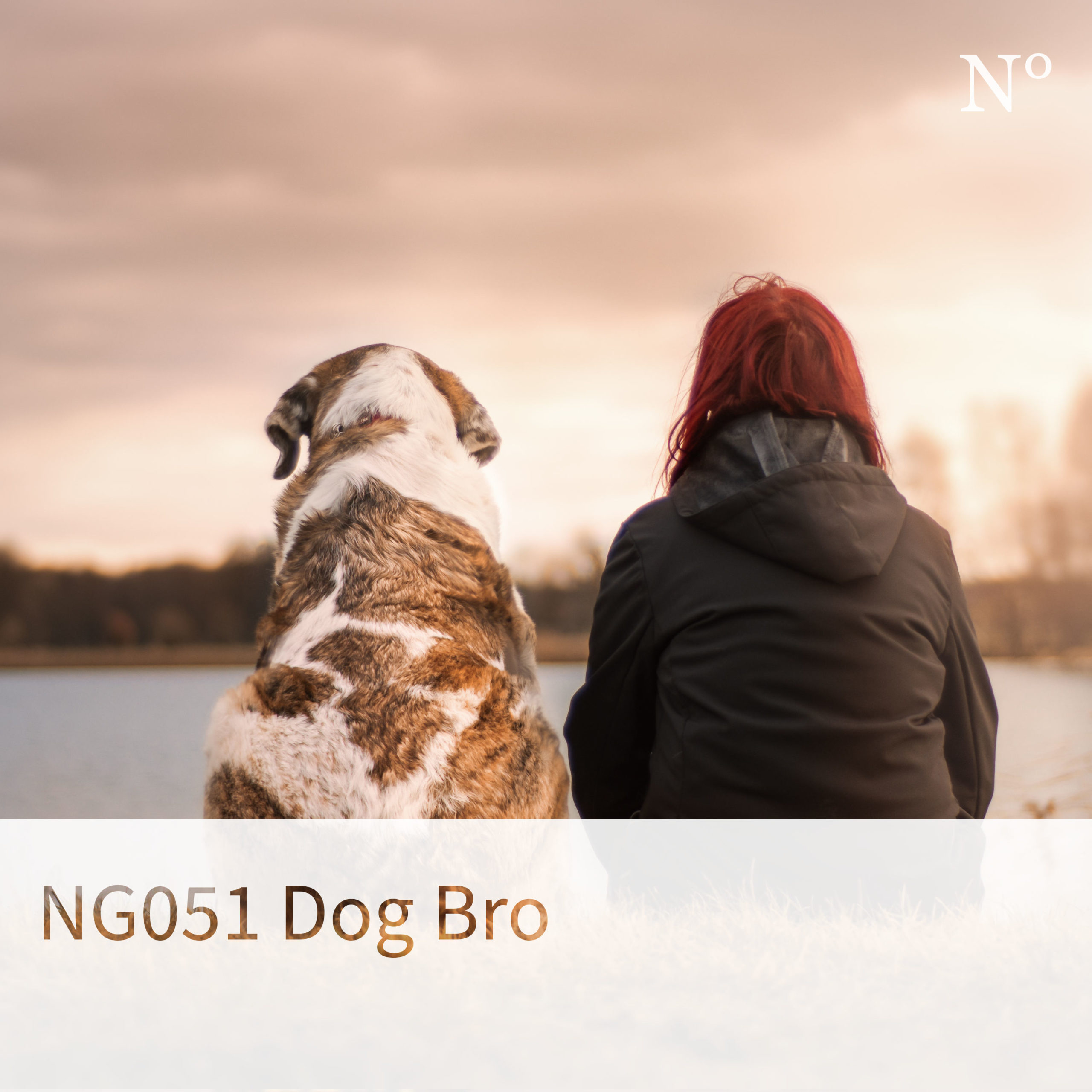 NG051 Dog Bro, Episoden-Cover